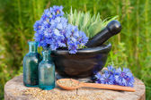 Mortar with blue cornflowers and sage, vials with essential oil — Stock Photo