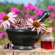 Mortar with coneflowers and vial with essentia oil in garden — Stock Photo #49904257