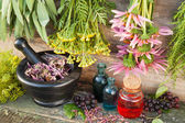 Bunches of healing herbs on wooden wall, mortar with dried plant — Stock Photo