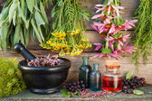 Bunches of healing herbs on wooden wall, mortar, bottles and ber — Stock Photo