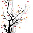 Stock Vector: Autumn tree, vector