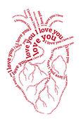 Rojo corazón humano, vector — Vector de stock