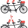 Tandem bicycle with love birds, vector — Vettoriali Stock