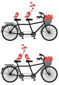 Tandem bicycle with love birds, vector — Vettoriale Stock