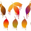 Autumn leaves with paint drops, vector set — Stock Vector