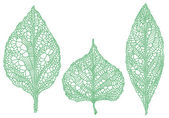 Green leaf silhouettes, vector set — Stock Vector