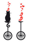 Cat and birds on bicycle, vector — Cтоковый вектор