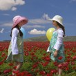Two girls in a red field — Stock Photo #2220242