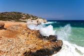 The sea coast — Stock Photo
