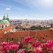View of Prague in summer - Stock Photo