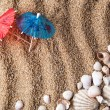 Frame from various shells on sand — Stock Photo