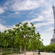Stock Photo: Eiffel tower in Paris, France