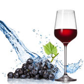Glass of wine with blue grape and water splash isolated on white — Stock Photo