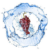 Blue grape with water splash isolated on white — Stock Photo