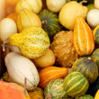 Pumpkins background — Foto de Stock