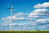 Wind generator turbines on summer landscape — Foto Stock