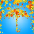 Umbrella from autumn leaves against blue sky — Stok fotoğraf