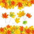 Stock Photo: Frame from autumn leaves isolated on white