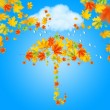 Umbrella from autumn leaves under cloud and rain — Stock Photo #35138721