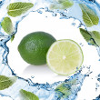 Water splash with lime and green mint isolated on white — Stock Photo