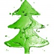 Green fir tree from water splash isolated on white — Stock Photo