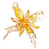 Flower from water splashes isolated on white — Stock Photo