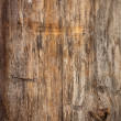 wood texture — Stock Photo #36590821