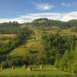 Summer mountains landscape in Carpathians, Ukraine — Stock Photo #39117767
