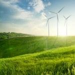 Wind generators turbines on sunset summer landscape — Stock Photo