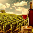 Stock Photo: Glass and bottle of red wine against vineyard landscape