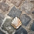 Santiago shell (Pilgrims shell), St James shell in Brussels, Bel — Stock Photo #41394067