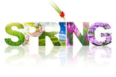 Spring word collage made of different photos isolated on white — Stock Photo
