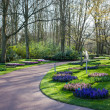 Famous flowers park Keukenhof in Netherlands also known as the G — ストック写真 #42324929