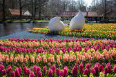 Lisse, Netherlands - April 20, 2013: Flowers in Keukenhof park,  — 图库照片