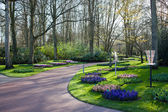 Famous flowers park Keukenhof in Netherlands also known as the G — Stock Photo