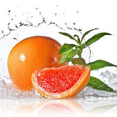 Water splash on grapefruit with mint isolated on white — Stock Photo