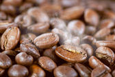 Roasted coffee beans with steam — Stock Photo