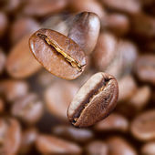 Falling roasted coffee beans with steam — Stock Photo