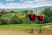 Glass of red wine against vineyard — Stock Photo