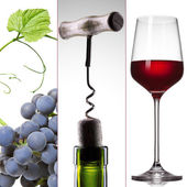 Wine collage - grape, bottle and glass — Stock Photo
