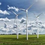 Wind generators turbines on summer landscape — Stock Photo #49813453