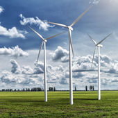 Wind generators turbines on summer landscape — Стоковое фото