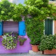 Color house on Burano island near Venice , Italy — Stock Photo #50986651