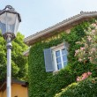 House with ivy and flowers in Italy — Stock Photo #50986879