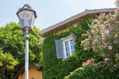 House with ivy and flowers in Italy — Stock Photo