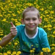 Boy on clearing from dandelions — Stock Photo #26382143