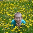 Boy on clearing from dandelions — Stok Fotoğraf #26382189