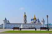 墙上,塔,塔和索非亚乌斯别斯基大教堂 — 图库照片