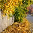 Golden autumn, old fence and road... — Stock Photo