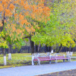 Benches in autumn park. — Stock Photo #33563117